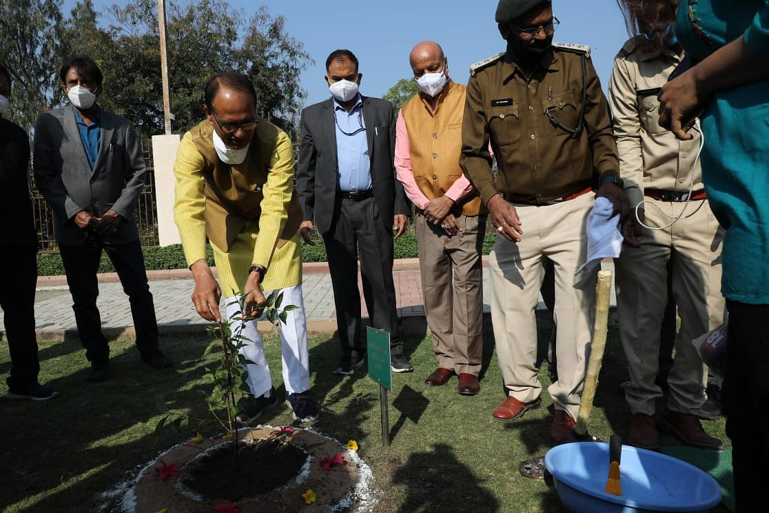 Shivraj Singh Chouhan planted sapling at MP Secretariat in Bhopal on Saturday