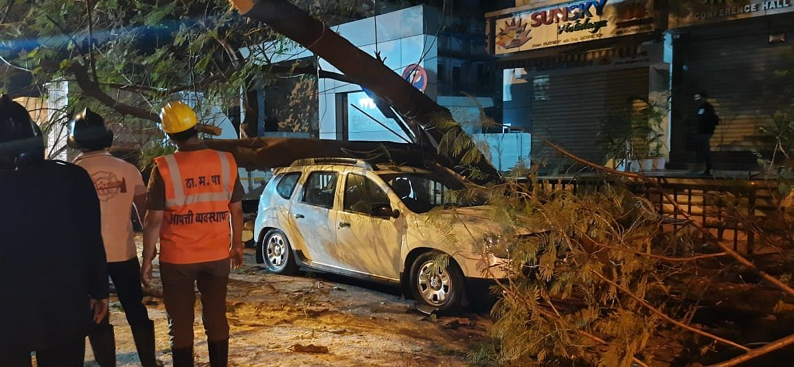 Thane: Tree collapses at Wagle estate area; vehicle damaged, no injuries reported