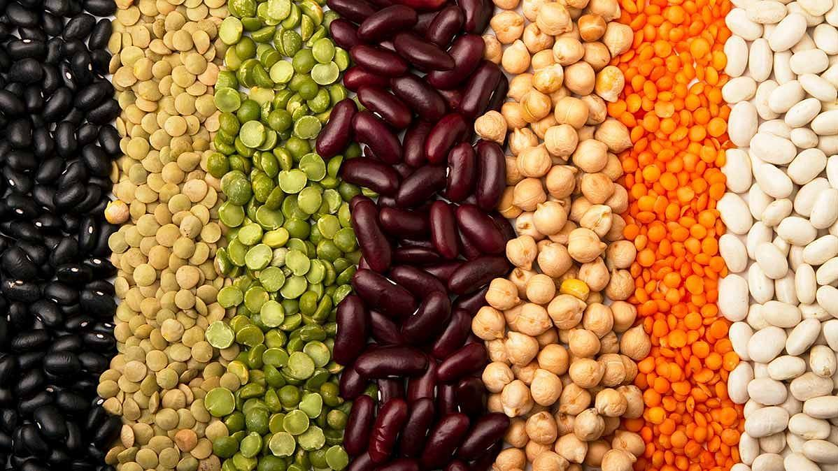 World Pulses Day 2021: Date, theme, significance, nutritional benefits of pulses - here's all you need to know