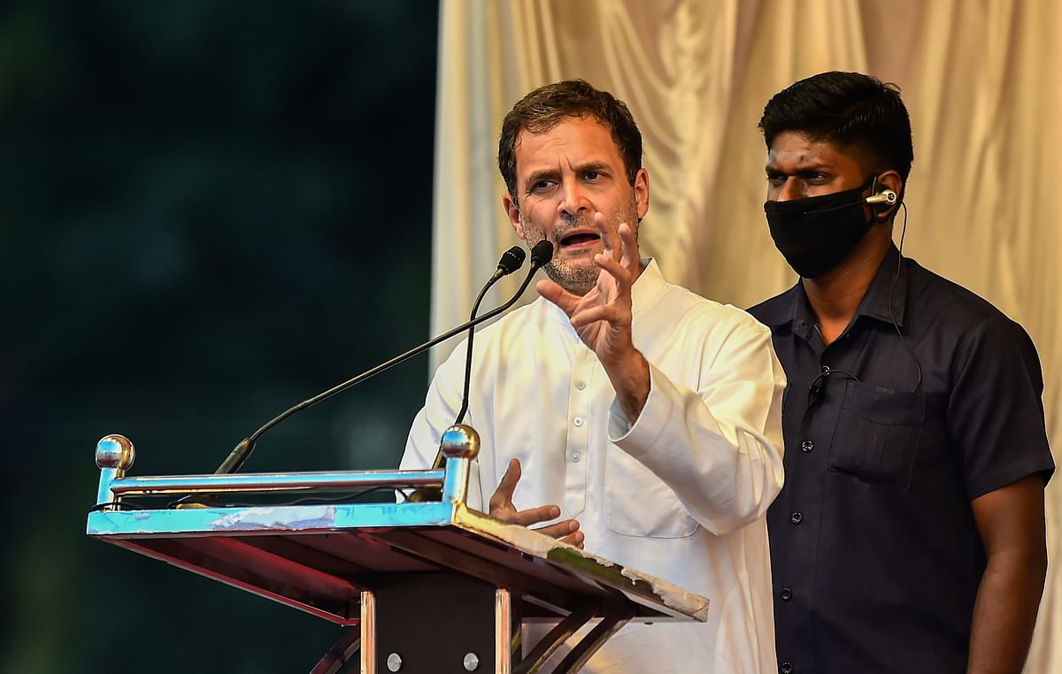 'I'll get arrested for saying this...': Rahul Gandhi reacts to activist Disha Ravi's arrest in 'toolkit' case