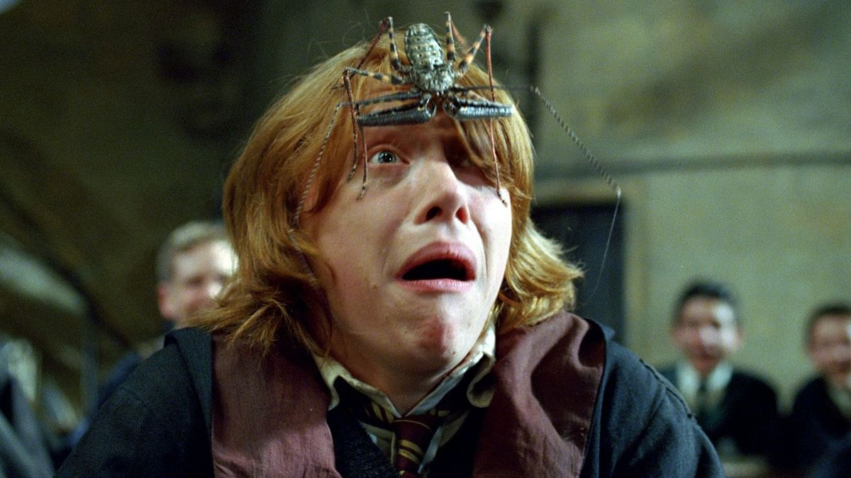 Wicked! Rupert Grint aka Ron Weasley admits he has not seen all of 'Harry Potter' movies