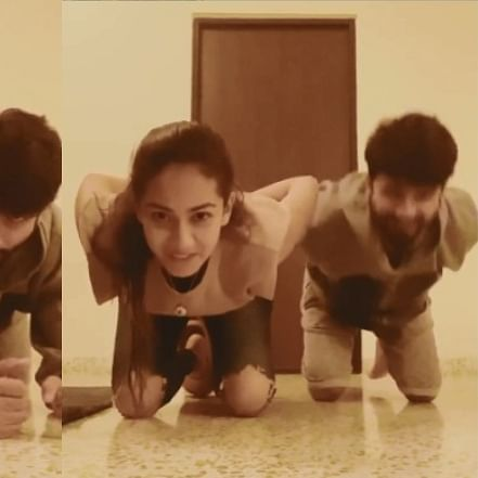 Watch: Shahid Kapoor aces 'Gravity Challenge' with wife Mira Rajput