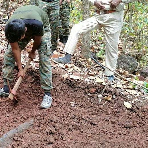 Madhya Pradesh: Balaghat police seize Naxalite dump in Kanha National Park