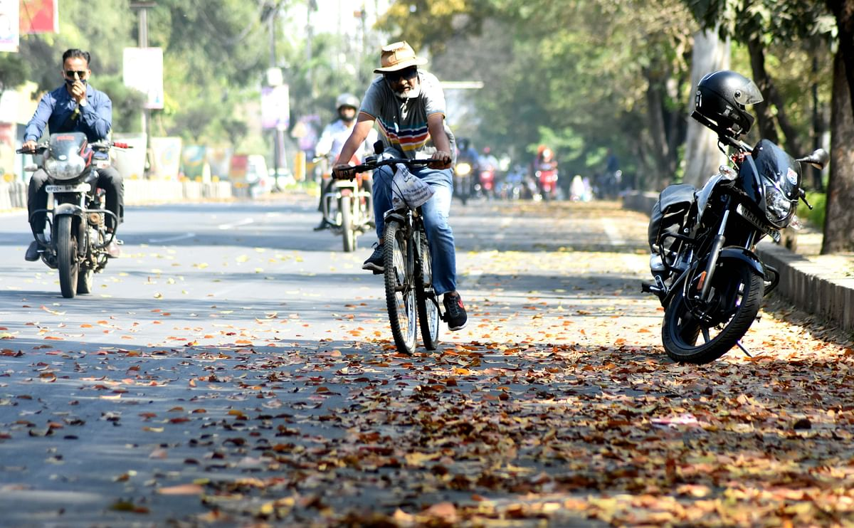 Madhya Pradesh: Hot weather prevails in state as mercury continues to soar
