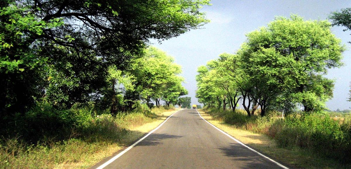 Madhya Pradesh: Party in power means more roads to MLAs