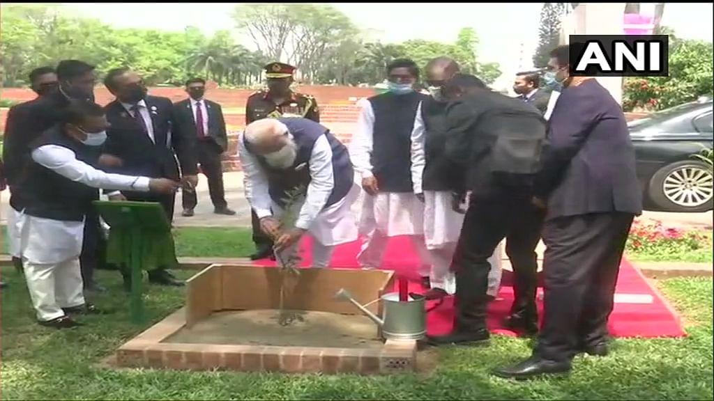 Bangladesh: Prime Minister Narendra Modi plants a sapling at National Martyrs' Memorial in Dhaka.