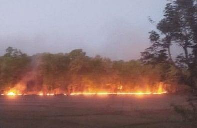 Fire Rages At Madhya Pradesh's Bandhavgarh National Park