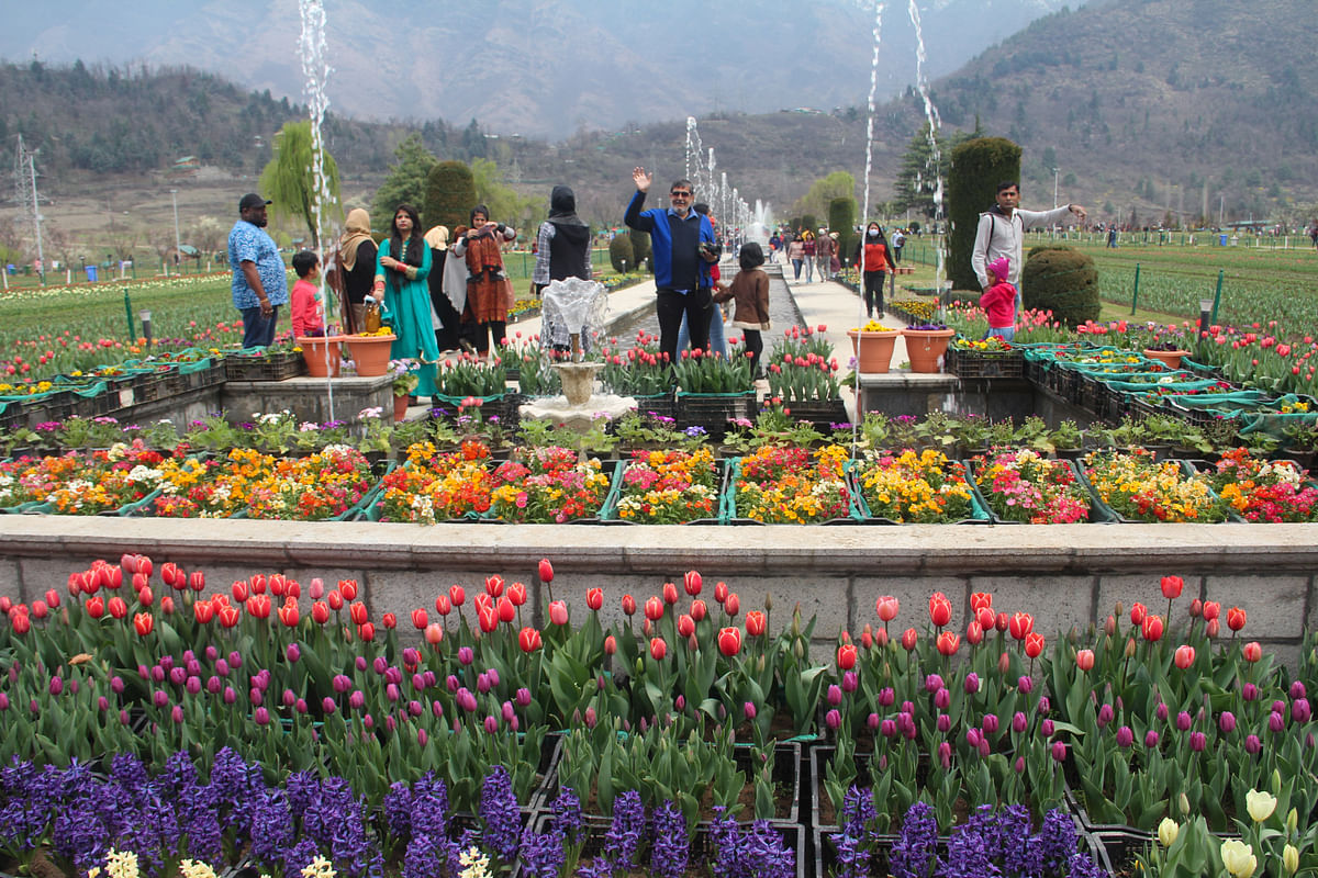 Good going amid pandemic: J&K shows excellent revival in domestic tourism