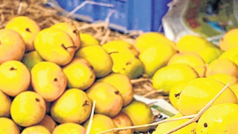 Mumbai: The king of fruits is finally here!