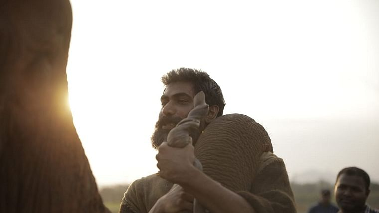 Rana's adventurous shoot in the wild for Haathi Mere Saathi