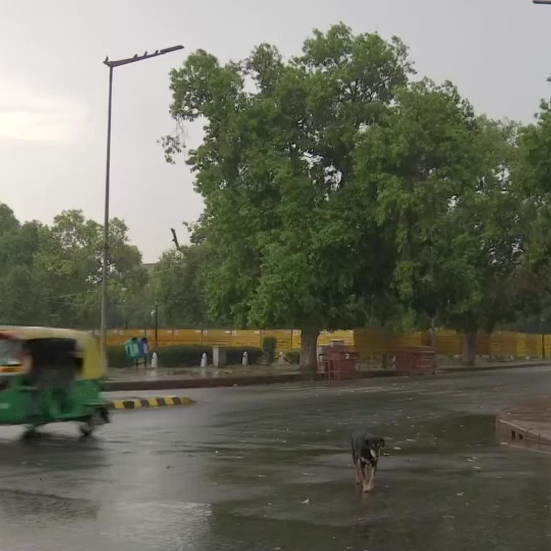Delhi weather: Rain lashes parts of national capital, IMD predicts 'thunderstorm with hail'