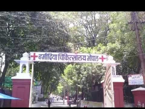 Bhopal: Kidney transplant registrations begins today at Hamidia Hospital