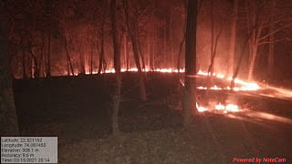 Fire in Alirajpur district forest