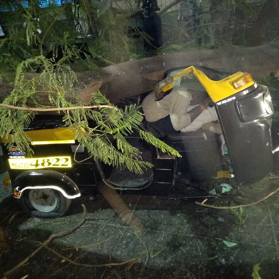 Thane: 2 crushed to death after tree falls on auto-rickshaw; family members blame civic body for negligence, demand compensation