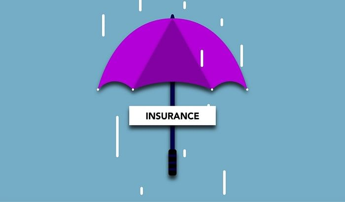 Insurance potential to drive VC investments in India: KPMG
