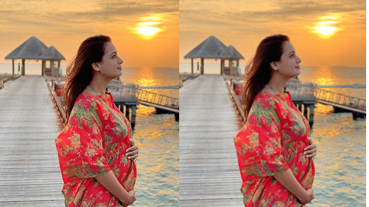 Dia Mirza announces pregnancy, says 'blessed to cradle this purest of all dreams in my womb'