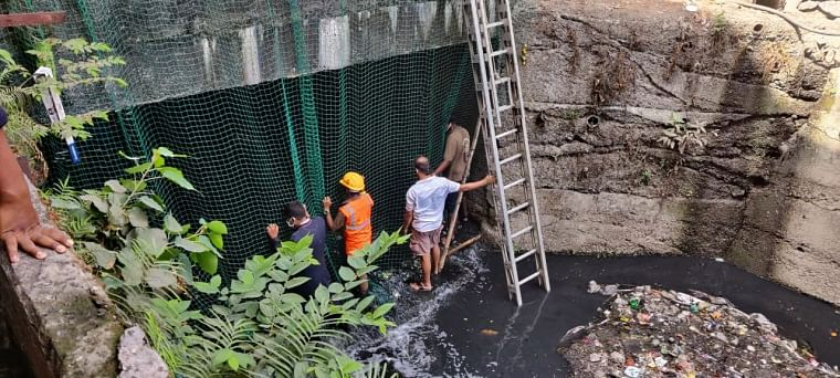 Thane: Crocodile found in drain; rescued after hours of operation