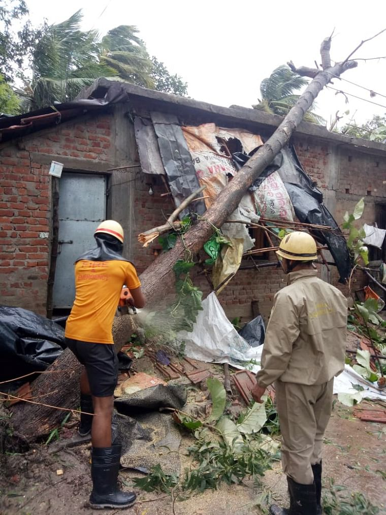 Firefighters personnel clear a fallen tree on  a house