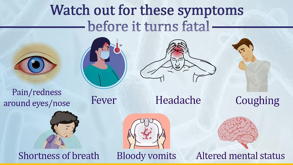 Mucormycosis: Health Minister Harsh Vardhan answers FAQs on black fungus; shares Dos and Don'ts