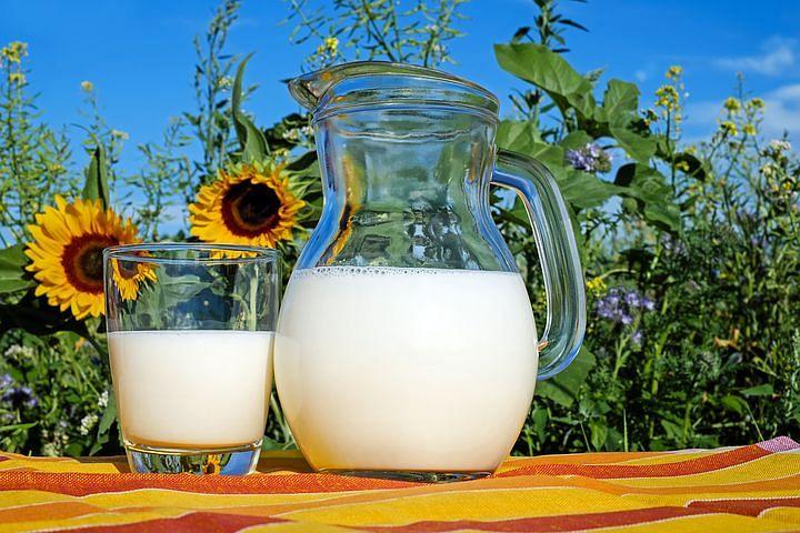 PETA India asks Amul to switch to producing vegan milk