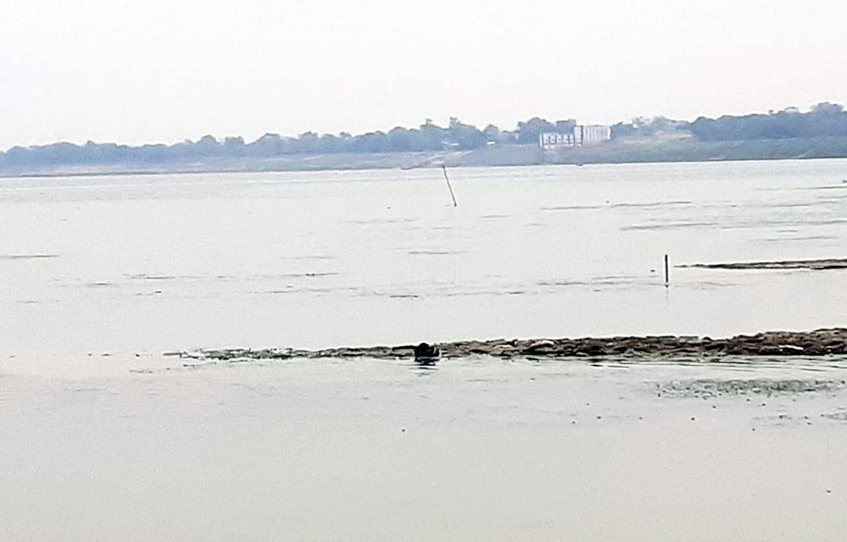 District admin cremates 2 more bodies found near Ganga in UP after video of dogs mauling them goes viral