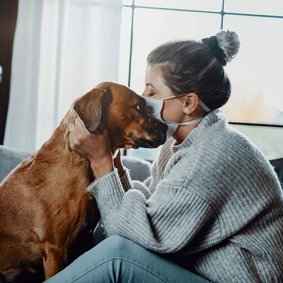 Covid-19: Experts share insights on how to care for pets when a pet parent tests positive
