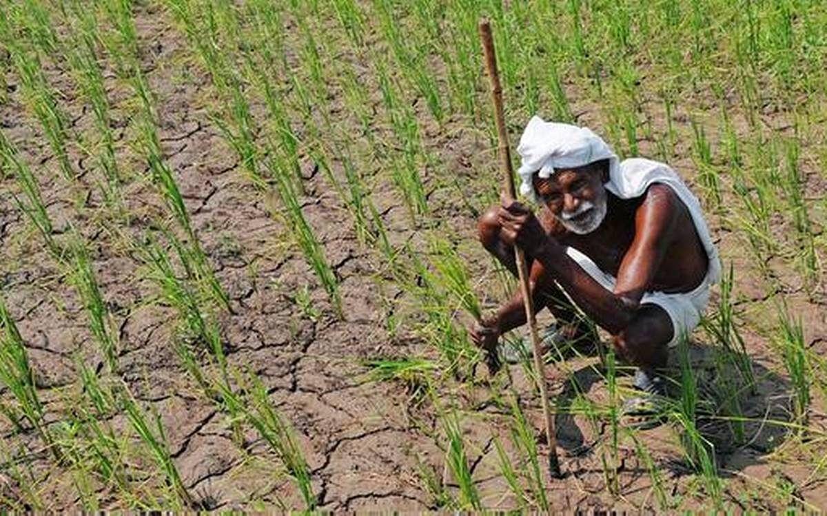 Maharashtra farmers to get Rs 2,065 under PM-KISAN scheme