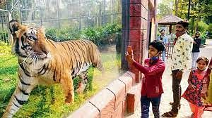 Mumbai: State and district committee set up to reduce man-animal conflict