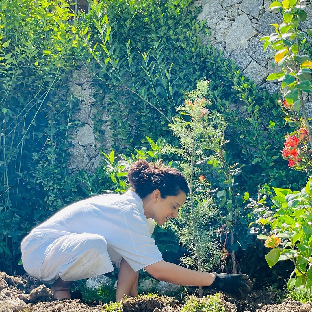 Kangana Ranaut plants trees in Cyclone Tauktae aftermath; requests BMC, Gujarat government to follow suit