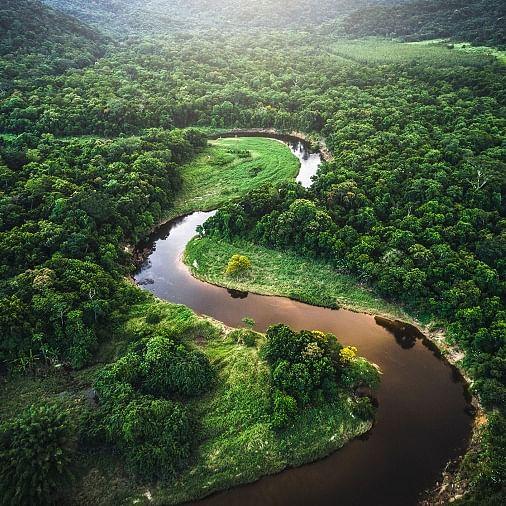 Declining biodiversity in wild Amazon fisheries threatens human diet