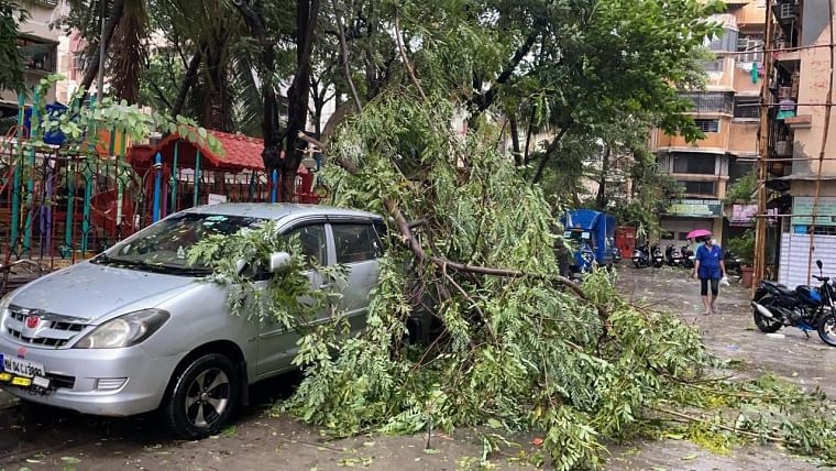 Mira Bhayander: Elderly woman dies after tree falls on hut due to Cyclone Tauktae
