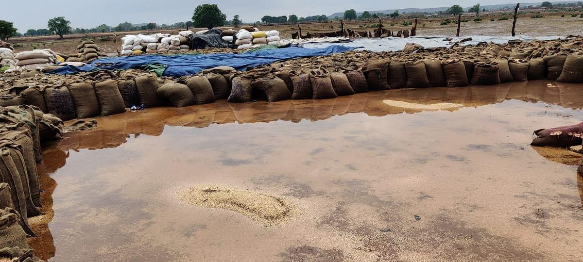 Bhopal: Madhya Pradesh witnesses intermittent rains, cool winds due to cyclone Tauktae