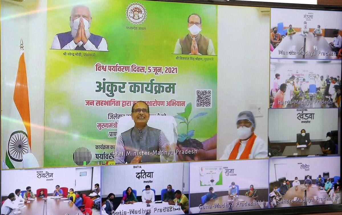Madhya Pradesh: World Environment Day celebrated across Khandwa district