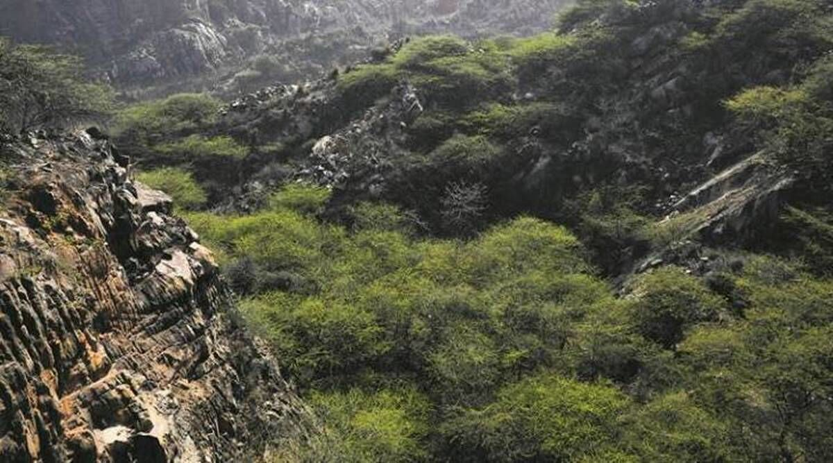 Now, the Supreme Court must stop  the Aravallis from folding up, writes Bhavdeep Kang