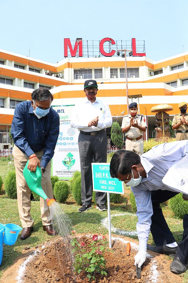 MCL celebrates World Environment Day-2021