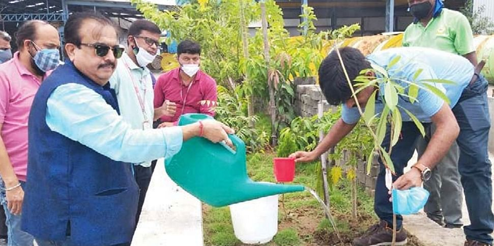 Polycab conducts plantation drive on World Environment Day in Daman