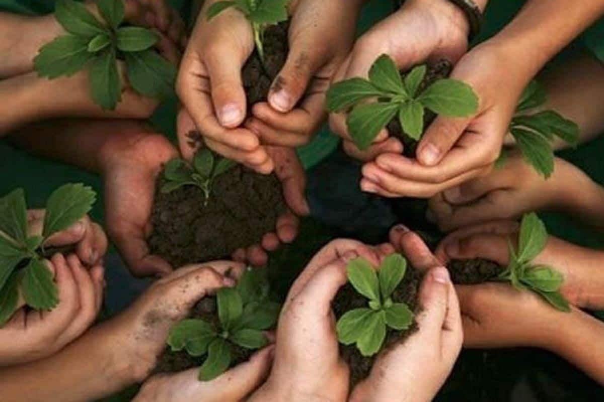 We seem hell-bent on turning earth itself into a hell, writes Anil Singh on World Environment Day