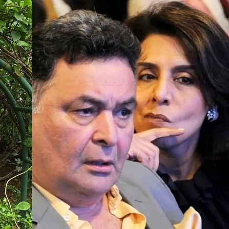 Neetu Kapoor shares an 'ironical' picture with late Rishi Kapoor; Alia Bhatt says 'love this'