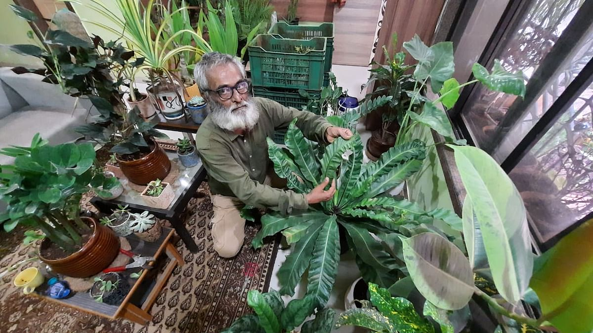 Thane: 62-year-old man vows to plant 75,000 trees till Independence day