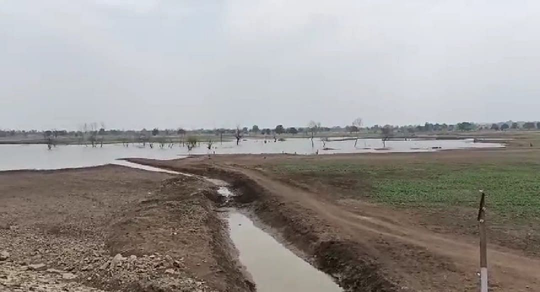 Madhya Pradesh: FIR registered against ex-SDM, eight others in connection with Rs 42 lakh land acquisition scam for Pipri Borbon pond in Burhanpur district