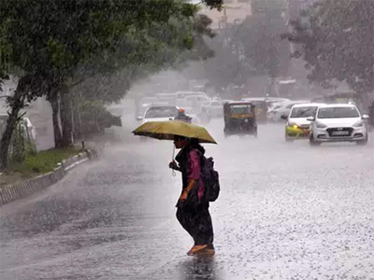 Bhopal: Monsoon showers subside in the state, lull will continue for the time being