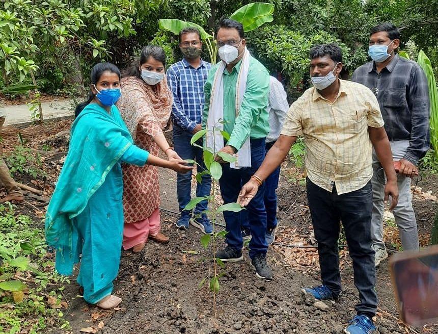 Dhar district collector Alok Kumar Singh during sapling plantation programme at Kelli village in Gandhwani tehsil of Dhar district
