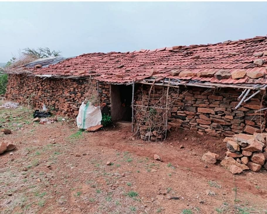 Jhabua: Triple murder at Jhaknawad village, police say it may due to dispute over 7-bigha farm land deceased owned
