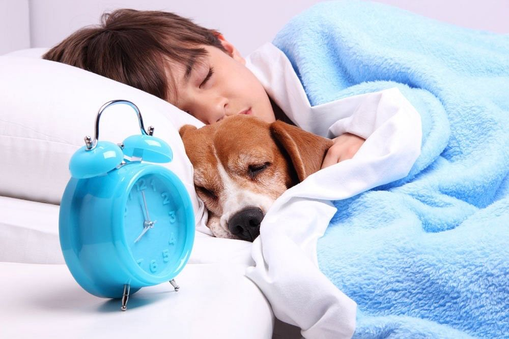 Co-sleeping with pets improves sleep quality in children, finds study