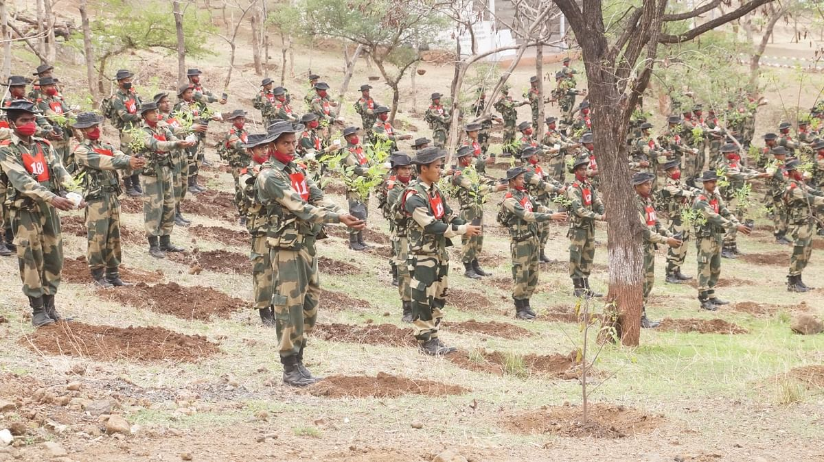 Indore: Border Security Force to plant 1.78 lakh saplings to enhance green cover in the region