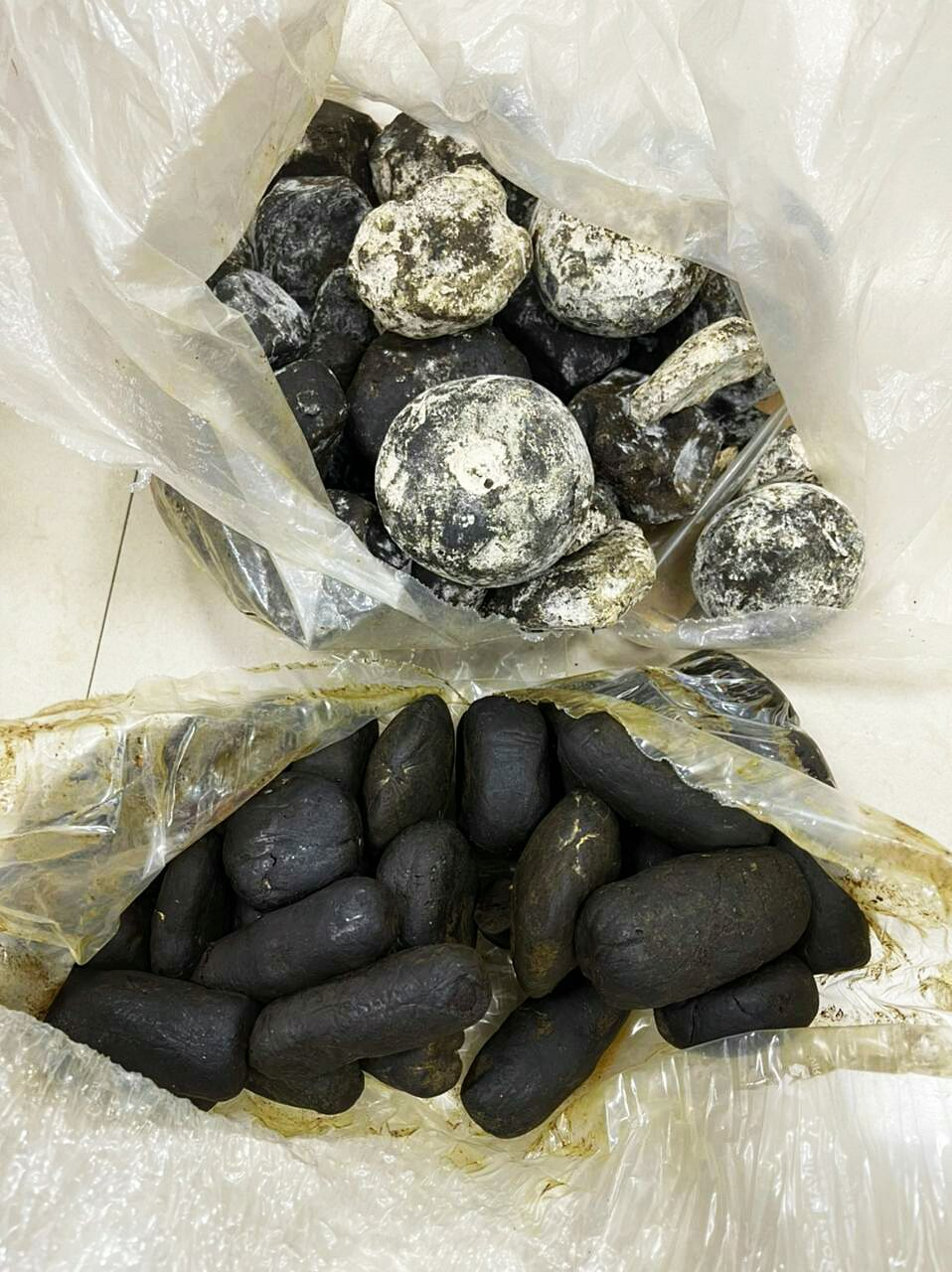 Mumbai: NCB arrests 7 persons, seizes 17.3 kg of Hashish and Rs 4.40 lakh cash