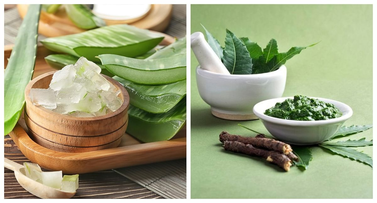 Neem and Aloe Vera: Two magical ingredients that can bless you with beautiful skin