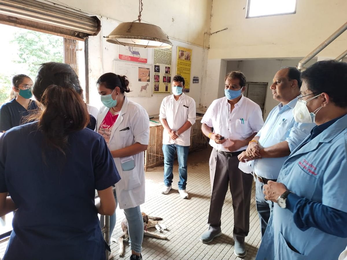 Indore: Veterinary Council of India president inspects Veterinary College