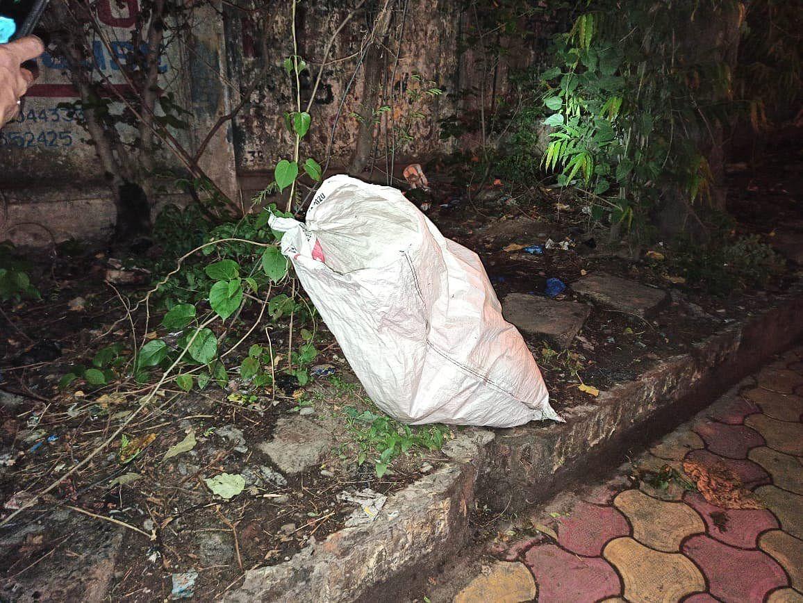 Bomb industry is flourishing in West Bengal under Mamata Banerjee's govt: Dilip Ghosh