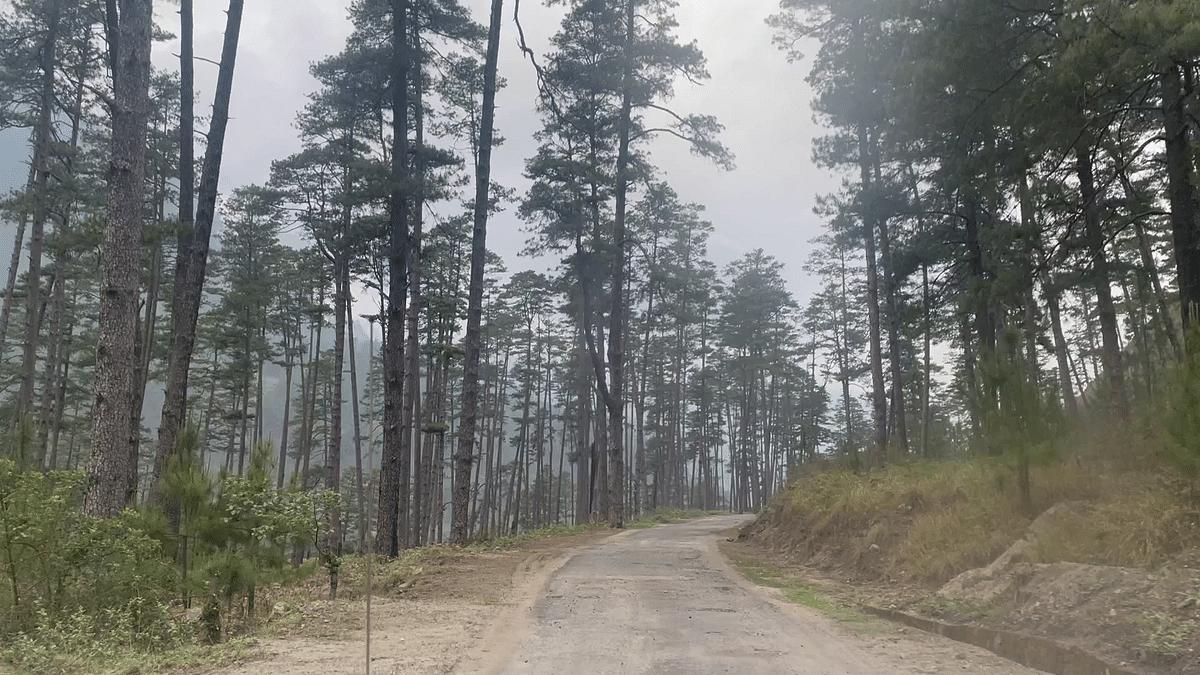 Roads in Kaho
